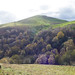 Malvern Hills view: Shire Ditch and Worcestershire Beacon
