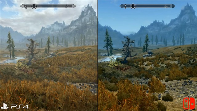 Skyrim - PS4 vs Switch lišće