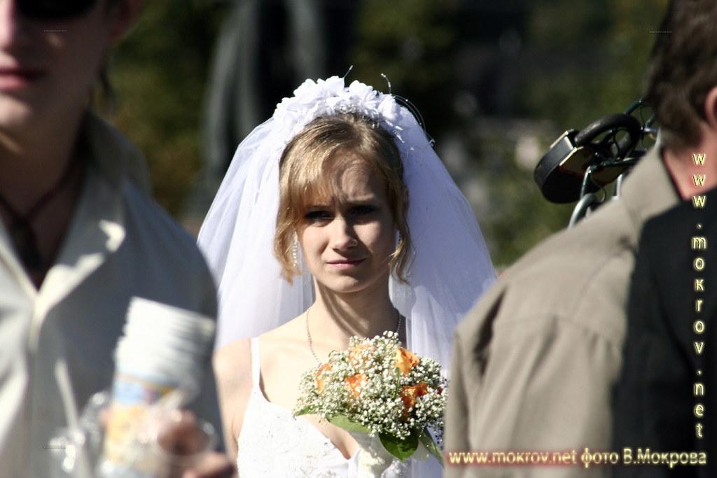 Свадьба пела и плясала.