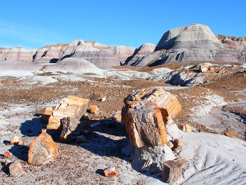 IMG_7495 Blue Mesa Loop Trail, Petrified Forest National Park