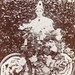 Decorated bicycle in the Ramsgate Floral Fete in 1907