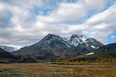 Polar Ural (Russia). The Rai-Iz mountain range. Dinosaur Mountain.