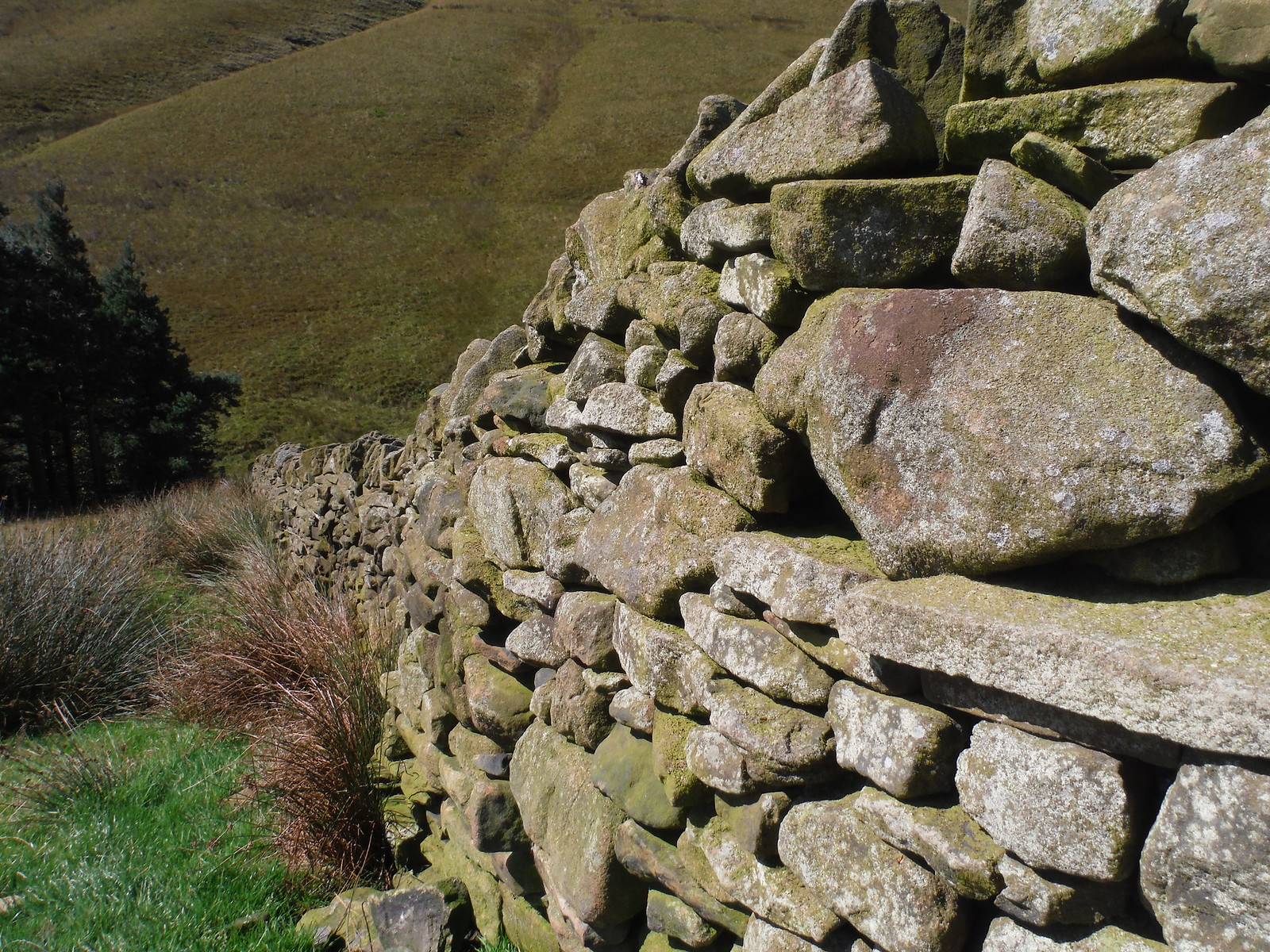 Drystone Wall, Pennine Way SWC Walk 303 - Edale Circular (via Kinder Scout and Mam Tor)