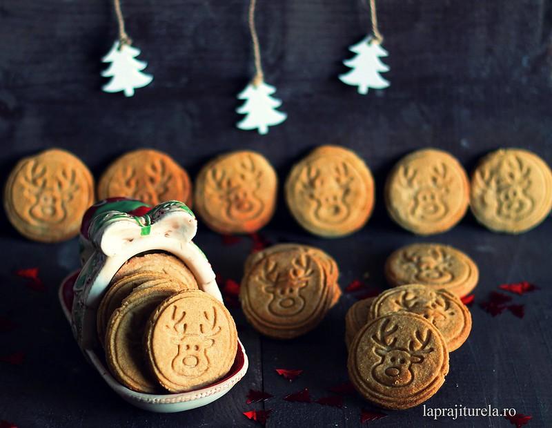 biscuiti ren 1