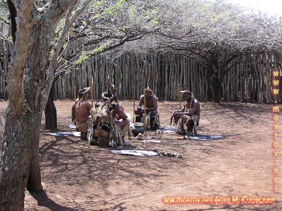 Национальный Парк Крюгера ЮАР  (16)