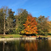 Round pond, Christchurch Park, Ipswich