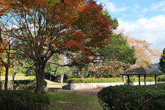 Fall colors at Takano Park