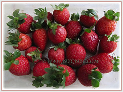 Vibrant red fruits of Fragaria x ananassa (Strawberry, Garden Strawberry, Cultivated Strawberry) sold in Cameron Highlands, 8 Aug 2011