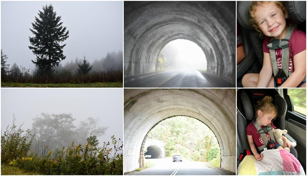 views, tunnels, ellie