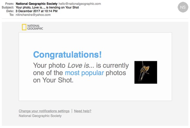 Your photo Love is is trending on Your Shot