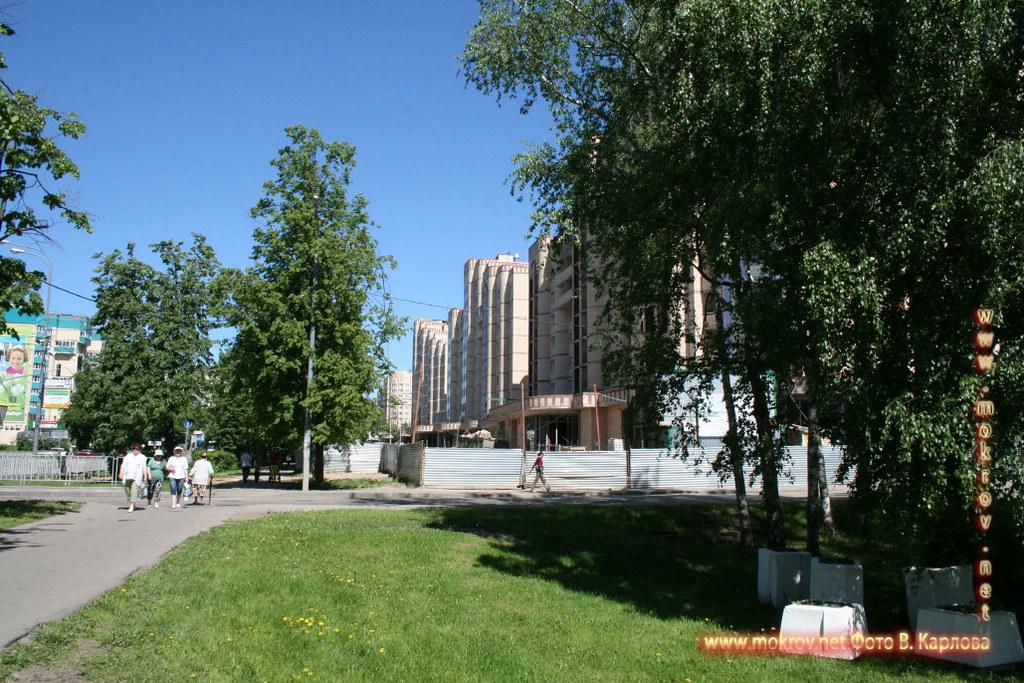Город Зеленоград пейзажи