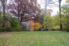 Brookside Gardens 9 Nov 2017 (160)