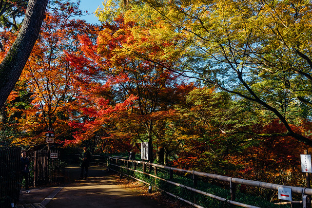 Kyoto_Kitano_03