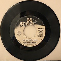 MIGHTY DIAMONDS:YOU ARE JUST A SONG(RECORD SIDE-A)