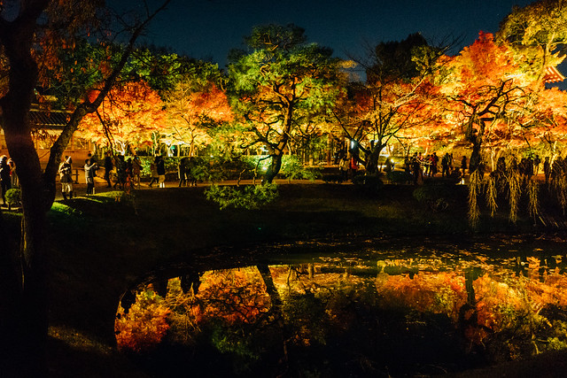 Kyoto_Byodoin_18