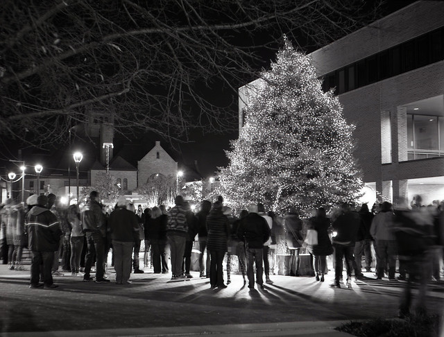 Findlay Ohio Holiday Tree Lighting