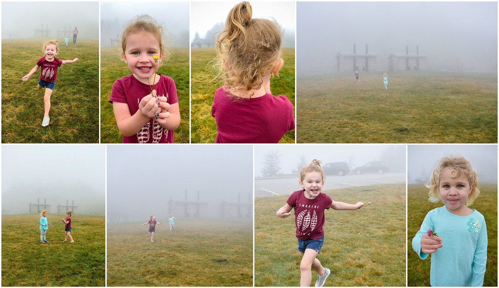 fun in the fog