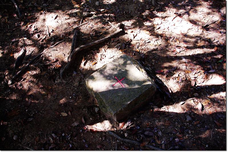白毛山森林三角點基盤