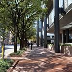Downtown Sidewalk