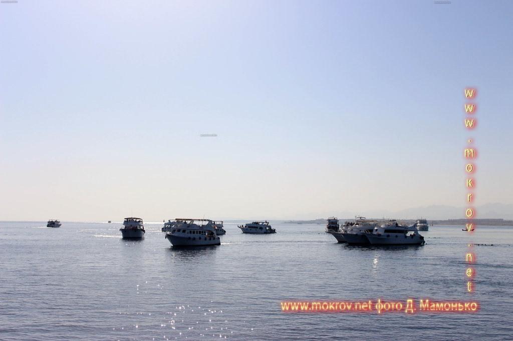 Шарм-эш-Шейх — город-курорт в Египте фотографии