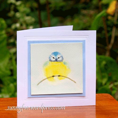 puffball blue tit card