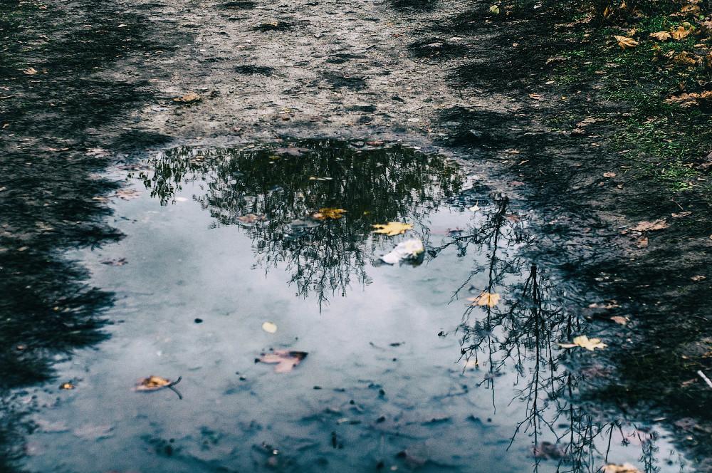 Поздняя осень в Киеве
