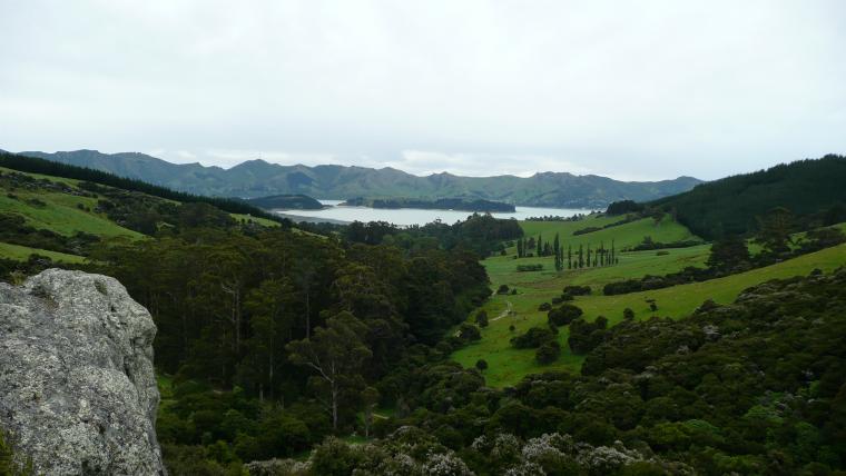 New Zealand Christmas 2009