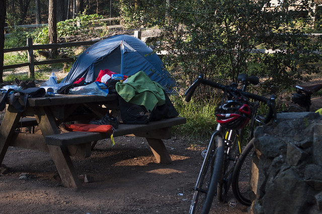Mount Tam Pan Toll camping