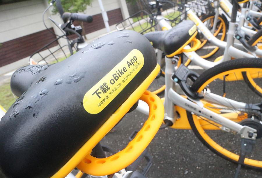 台東景點 羅山自行車道12