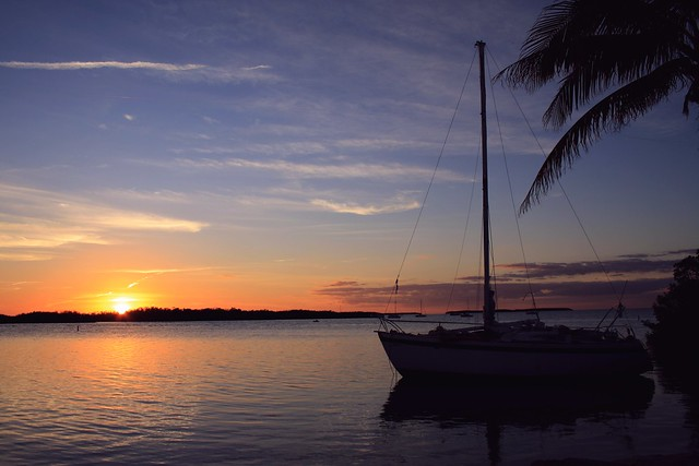 Set Sail Dreams