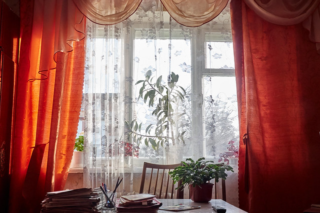 window with orange curtains, and flowers in pots