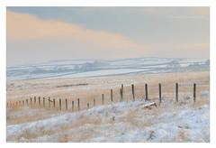 December Pastels II