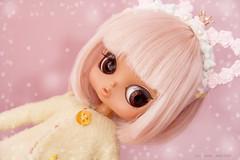 Babie - Byul Tiger Lily