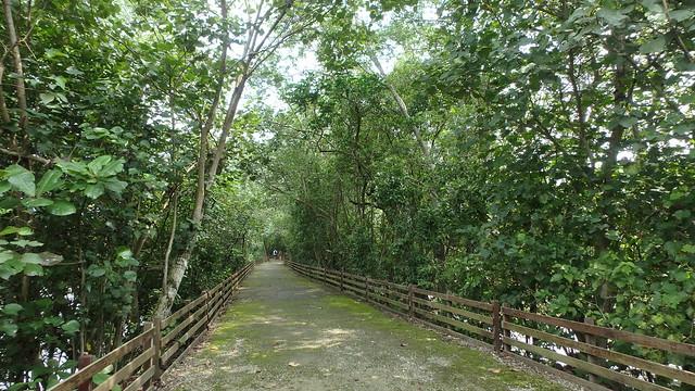 Sungei Buloh Wetland Reserve: Route 1