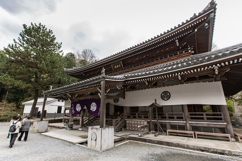 Chion-in-22