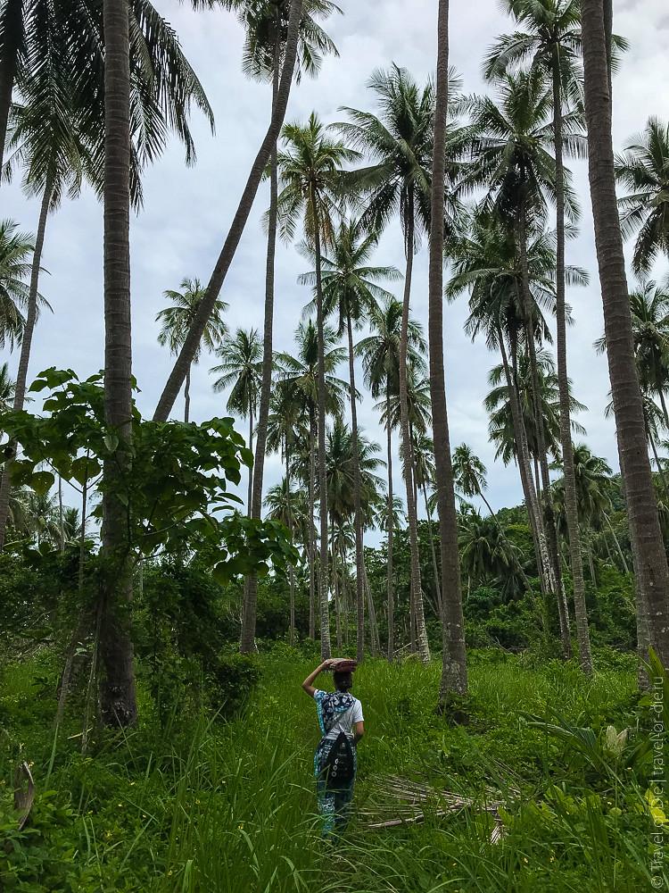 12.11-Ko-Lon-Phuket-iphone-3203