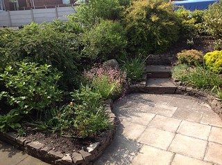 The changes in our garden