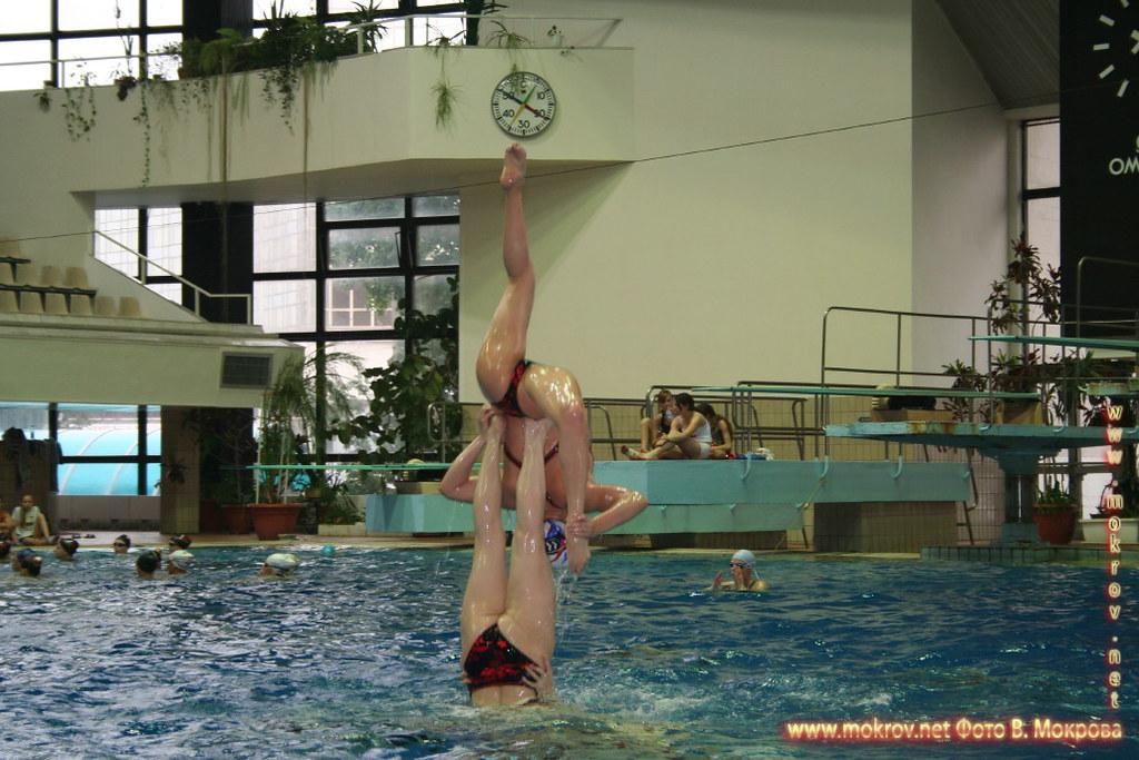 Сборная команда России по синхронному плаванию и фотокамера
