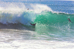 The Wave at the Wedge