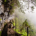 A foggy day in Madeira