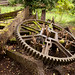 TIMS Mill Tour 2017 UK - Churchill Forge - moss-covered disused equipment-0703
