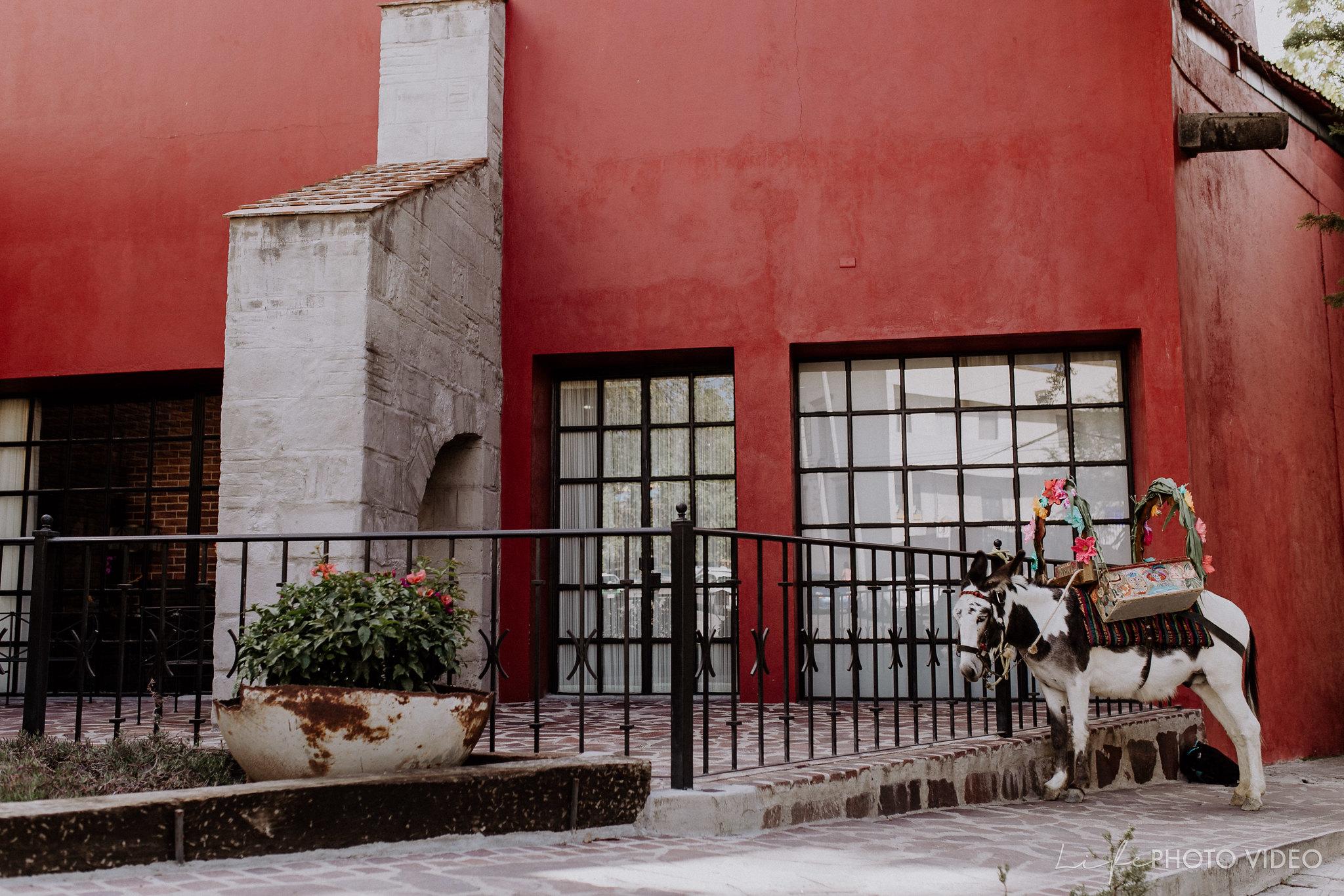 SanMigueldeAllende_Wedding_Callejoneada_Vaquillada_0041