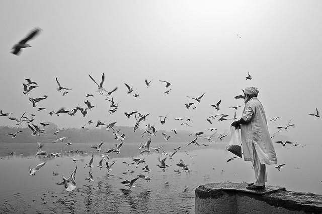 Beauty of Yamuna Ghat