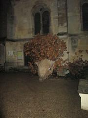 IMG_3017 - Photo of Commeny