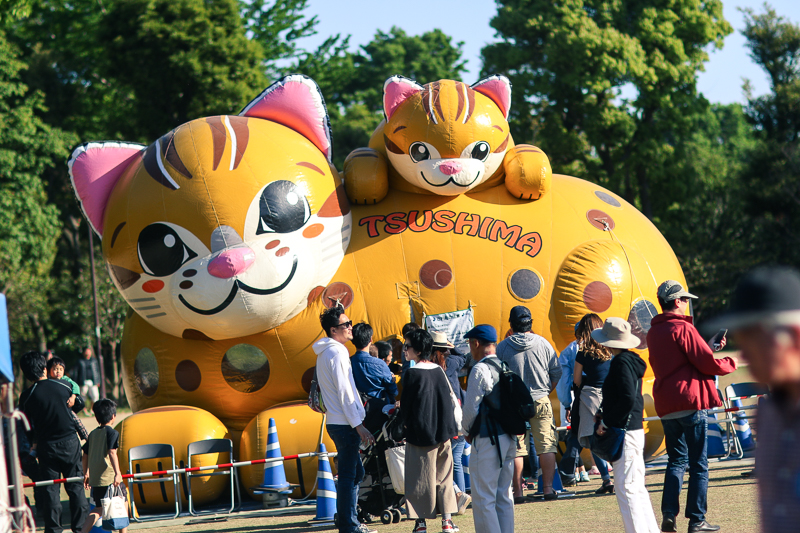 Tsushima cat inflatable