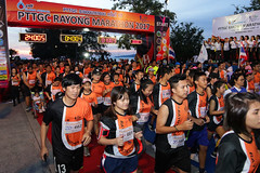 RYmarathon2017_Higlight-90