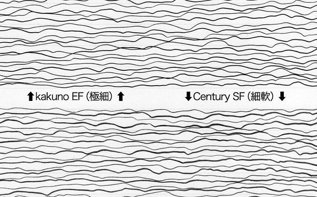 プラチナ万年筆 #3776 センチュリー 細軟 金ペン PLATINUM Century SoftFine