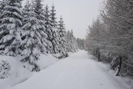 České hory nabízí kvalitní běžkování