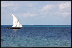 Dhaw in Pemba Island