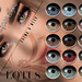 Fairylight Eyes @ Tannenbaum by LOTUS. & Ugly Duckling